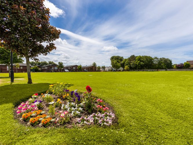 Willowgrove gardens and flowers