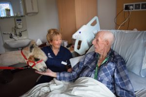 trinity hospice bedded unit
