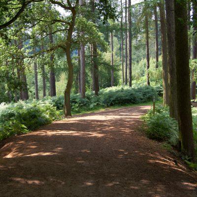 Oakmere Country Park